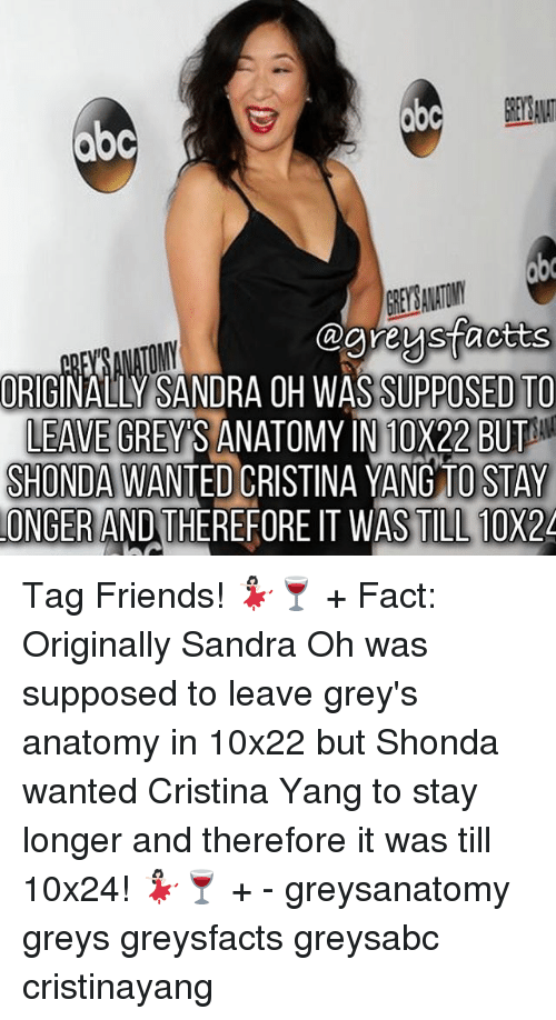Abc ORIGINALLY SANDRA OH WAS SUPPOSED TO LEAVE GREYS ANATOMY IN ...