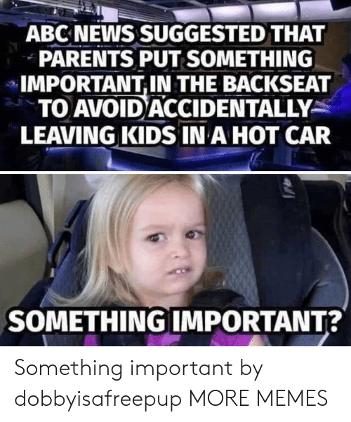 Abc, Dank, and Memes: ABC NEWS SUGGESTED THAT  PARENTS PUT SOMETHING  IMPORTANT,IN THE BACKSEAT  TO AVOID ACCIDENTALLY  LEAVING KIDS IN A HOT CAR  SOMETHING IMPORTANT? Something important by dobbyisafreepup MORE MEMES