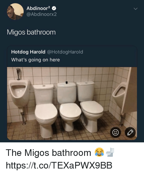 Memes, Migos, and 🤖: Abdinoor2 Q  @Abdinoorx2  Migos bathroom  Hotdog Harold @HotdogHarold  What's going on here The Migos bathroom 😂🚽 https://t.co/TEXaPWX9BB