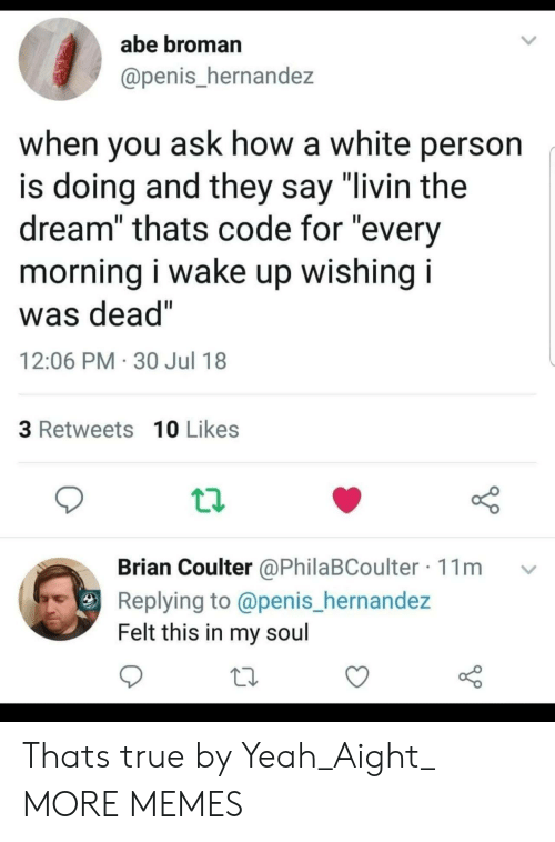 """Dank, Memes, and Target: abe broman  @penis_hernandez  when you ask how a white person  is doing and they say """"livin the  dream"""" thats code for """"every  morning i wake up wishing i  Was dead  12:06 PM 30 Jul 18  3 Retweets 10 Likes  Brian Coulter @PhilaBCoulter 11m v  Replying to @penis_hernandez  Felt this in my soul Thats true by Yeah_Aight_ MORE MEMES"""