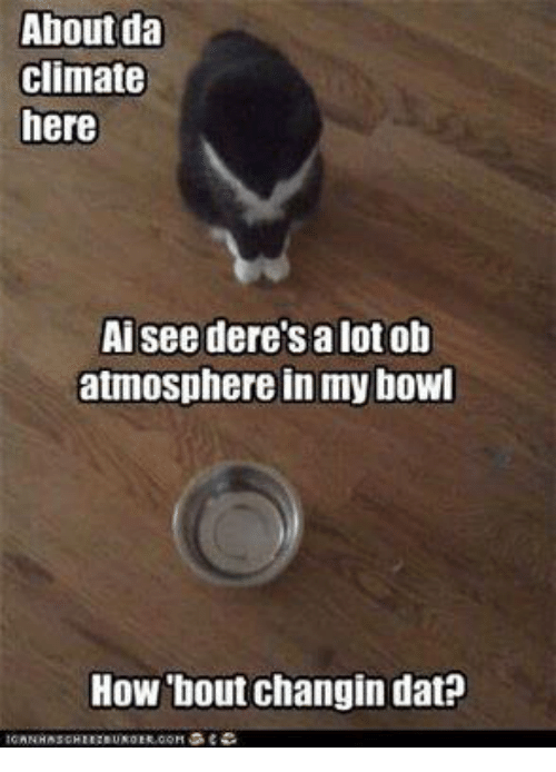 Memes, Bowling, and Bowl: About da  Climate  here  Ai see dere's a lot ob  atmosphere in my bowl  How bout changin dat