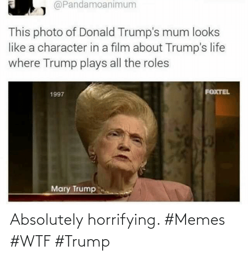 Memes, Wtf, and Trump: Absolutely horrifying. #Memes #WTF #Trump