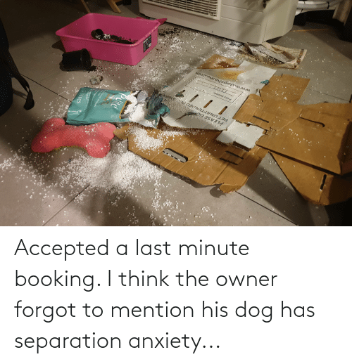 Anxiety, Booking, and Accepted: Accepted a last minute booking. I think the owner forgot to mention his dog has separation anxiety...