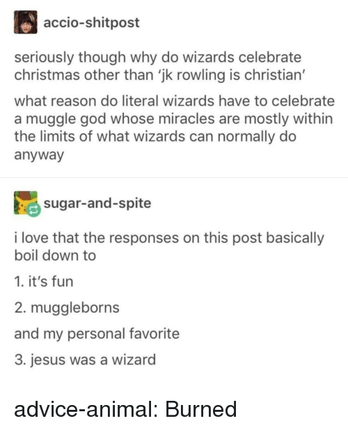 Advice, Christmas, and God: accio-shitpost  seriously though why do wizards celebrate  christmas other than 'jk rowling is christian'  what reason do literal wizards have to celebrate  a muggle god whose miracles are mostly within  the limits of what wizards can normally do  anyway  sugar-and-spite  i love that the responses on this post basically  boil down to  1. it's fun  2. muggleborns  and my personal favorite  3. jesus was a wizard advice-animal:  Burned