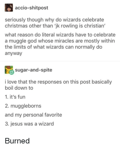 Christmas, God, and Jesus: accio-shitpost  seriously though why do wizards celebrate  christmas other than 'jk rowling is christian'  what reason do literal wizards have to celebrate  a muggle god whose miracles are mostly within  the limits of what wizards can normally do  anyway  sugar-and-spite  i love that the responses on this post basically  boil down to  1. it's fun  2. muggleborns  and my personal favorite  3. jesus was a wizard Burned