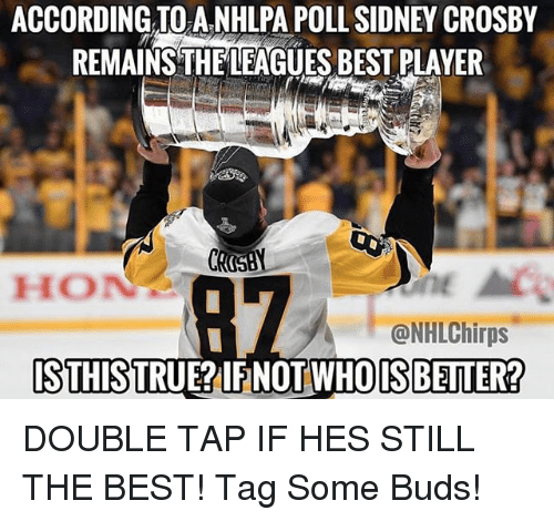 Memes, Best, and According: ACCORDING TO A.NHLPA POLL SIDNEY CROSBY  REMAINS THELEAGUES BEST PLAYER  HON  @NHLChirps  STHISTRUE?IFNOT WHOISBEITER? DOUBLE TAP IF HES STILL THE BEST! Tag Some Buds!