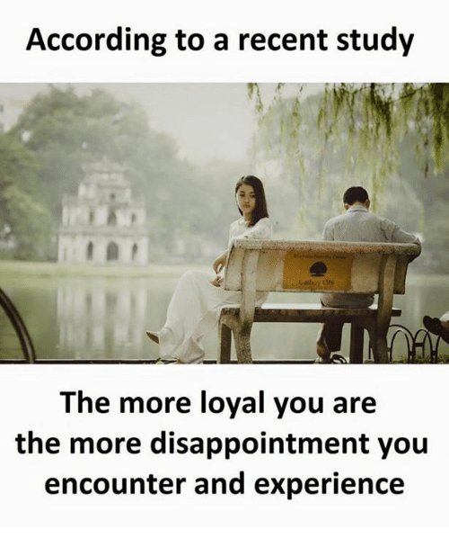 Experience, According, and You: According to a recent study  The more loyal you are  the more disappointment you  encounter and experience