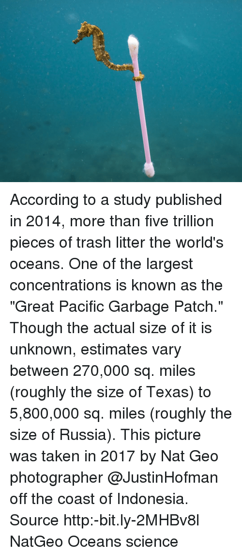 "Memes, Taken, and Trash: According to a study published in 2014, more than five trillion pieces of trash litter the world's oceans. One of the largest concentrations is known as the ""Great Pacific Garbage Patch."" Though the actual size of it is unknown, estimates vary between 270,000 sq. miles (roughly the size of Texas) to 5,800,000 sq. miles (roughly the size of Russia). This picture was taken in 2017 by Nat Geo photographer @JustinHofman off the coast of Indonesia. Source http:-bit.ly-2MHBv8l NatGeo Oceans science"