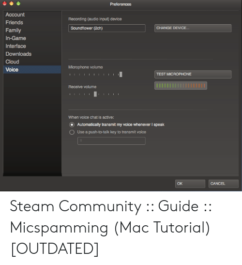 Steam Audio Input