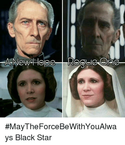 Memes, 🤖, and Ace: -ace-ence) #MayTheForceBeWithYouAlways   Black Star