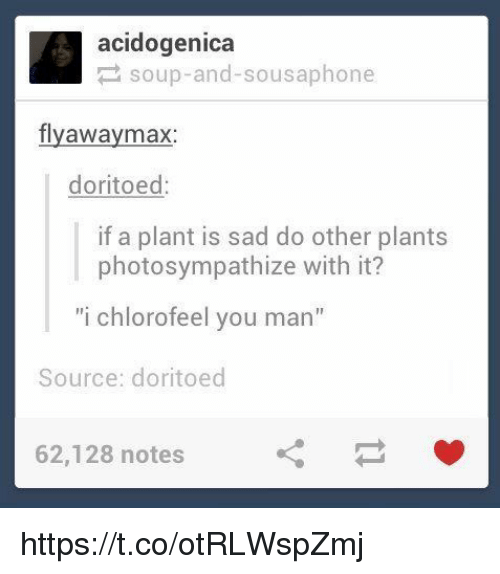 "Sad, Acid, and Source: acid ogenica  soup-and-sousaphone  fly away max  doritoed  if a plant is sad do other plants  photosympathize with it?  ""i chlorofeel you man""  Source: doritoed  62,128 notes https://t.co/otRLWspZmj"