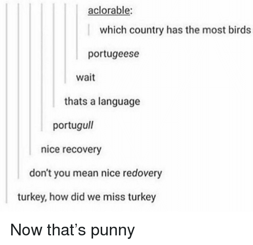 Memes, Birds, and Mean: aclorable  which country has the most birds  portugeese  wait  thats a language  portugull  nice recovery  don't you mean nice redovery  turkey, how did we miss turkey Now that's punny