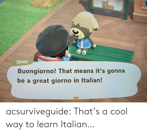 Tumblr, Blog, and Cool: acsurviveguide:  That's a cool way to learn Italian…