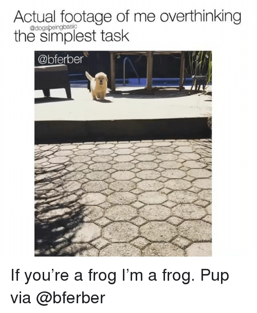 Memes, Pup, and 🤖: Actual footage of me overthinking  the simplest task  @dogspeingbasic  @bferber If you're a frog I'm a frog. Pup via @bferber