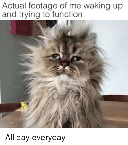 Memes, 🤖, and Day: Actual footage of me waking up  and trying to function All day everyday