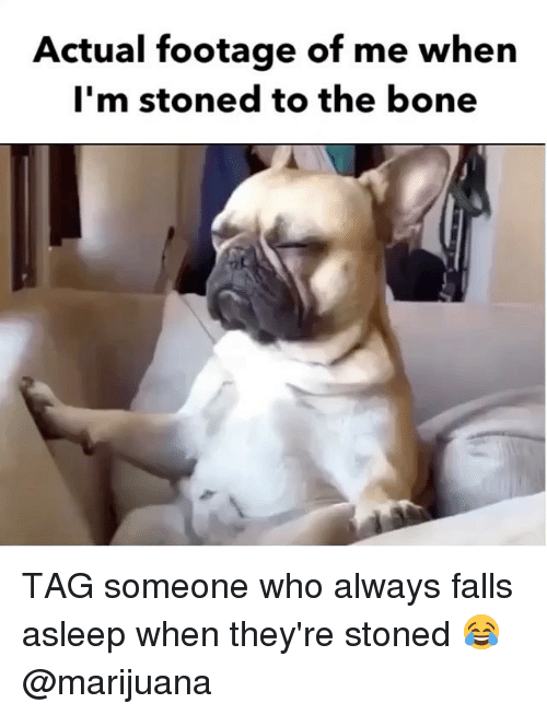 Weed, Marijuana, and Tag Someone: Actual footage of me when  I'm stoned to the bone TAG someone who always falls asleep when they're stoned 😂 @marijuana