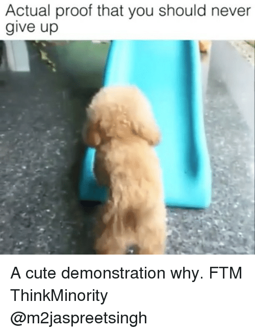 Cute, Memes, and Never: Actual proof that you should never  give up A cute demonstration why. FTM ThinkMinority @m2jaspreetsingh