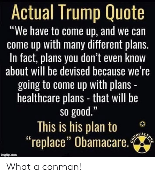 """Memes, Good, and Obamacare: Actual Trump Quote  """"We have to come up, and we can  come up with many different plans.  In fact, plans you don't even know  about will be devised because we're  going to come up with plans  healthcare plans - that will be  so good  This is his plan to 3  """"replace"""" Obamacare.  13 What a conman!"""