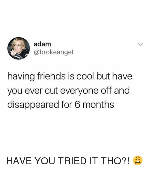 Friends, Memes, and Cool: adam  @brokeangel  having friends is cool but have  you ever cut everyone off and  disappeared for 6 months HAVE YOU TRIED IT THO?! 😩