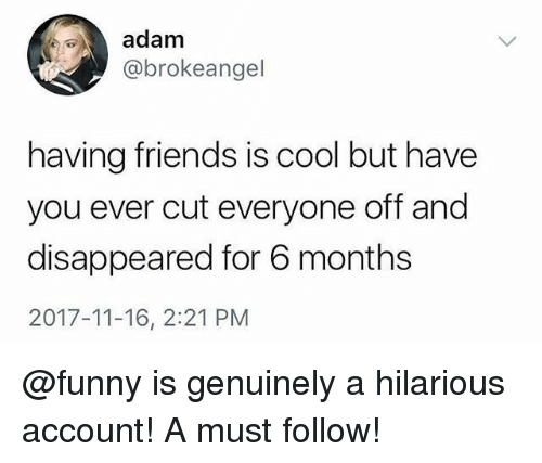 Friends, Funny, and Memes: adam  @brokeangel  having friends is cool but have  you ever cut everyone off and  disappeared for 6 months  2017-11-16, 2:21 PM @funny is genuinely a hilarious account! A must follow!