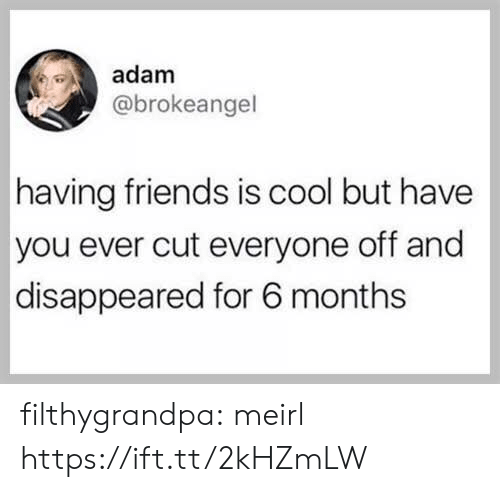 Friends, Tumblr, and Blog: adam  @brokeangel  having friends is cool but have  you ever cut everyone off and  disappeared for 6 months filthygrandpa:  meirl https://ift.tt/2kHZmLW