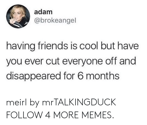 Dank, Friends, and Memes: adam  @brokeangel  having friends is cool but have  you ever cut everyone off and  disappeared for 6 months meirl by mrTALKINGDUCK FOLLOW 4 MORE MEMES.