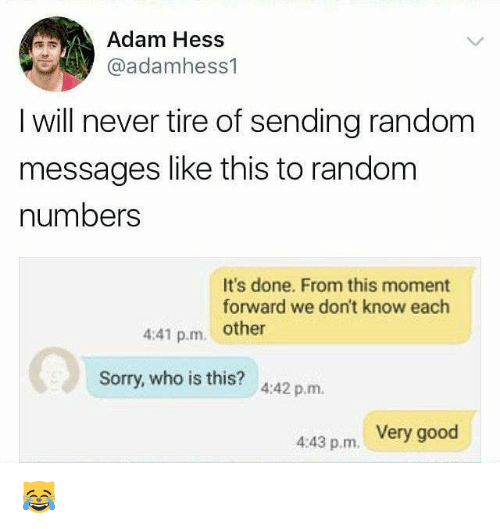 Memes, Sorry, and Good: Adam Hess  @adamhess1  I will never tire of sending random  messages like this to random  numbers  It's done. From this moment  forward we don't know each  4:41 p.m. other  Sorry, who is this? 442 p.m.  4:43 p.m. Very good 😹