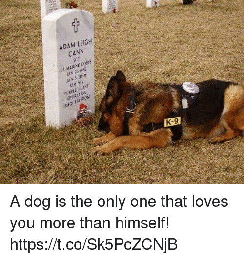 Heart, Purple, and Freedom: ADAM LEIGH  CANN  NE COR  US MAR  25 1382  JAN HEART  PURPLE  FREEDOM  IR40' K-9 A dog is the only one that loves you more than himself! https://t.co/Sk5PcZCNjB