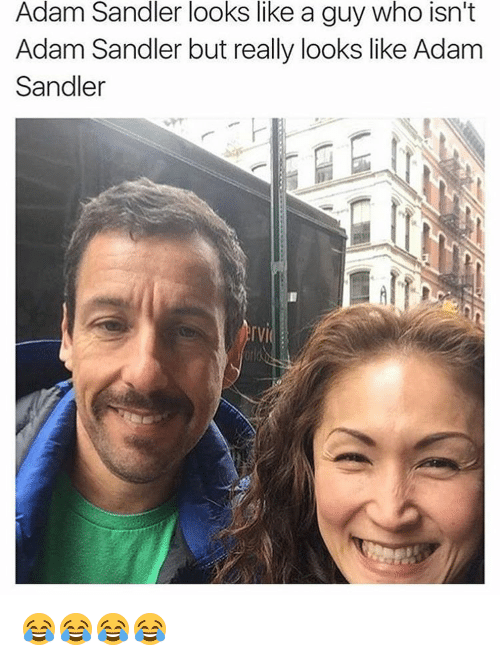 adam sandler looks like a guy who isnt adam sandler 2865786 adam sandler looks like a guy who isn't adam sandler but really