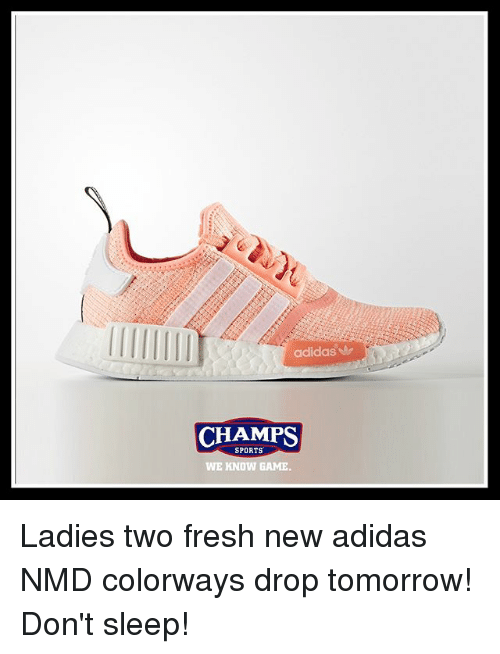 Adidas, Fresh, and Memes: adidas A  CHAMPS  SPORTS  WE KNOW GAME. Ladies two fresh new adidas NMD colorways drop tomorrow! Don't sleep!