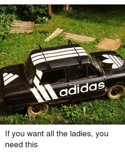 Adidas, Memes, and 🤖: adidas If you want all the ladies, you need this