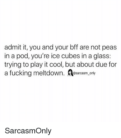 Fucking, Funny, and Memes: admit it, you and your bff are not peas  in a pod, you're ice cubes in a glass:  trying to play it cool, but about due for  a fucking meltdown. Aesarcasm, only SarcasmOnly