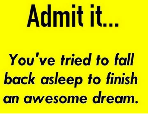 Fall, Memes, and Awesome: Admit it  You've tried to fall  back asleep to finish  an awesome dream
