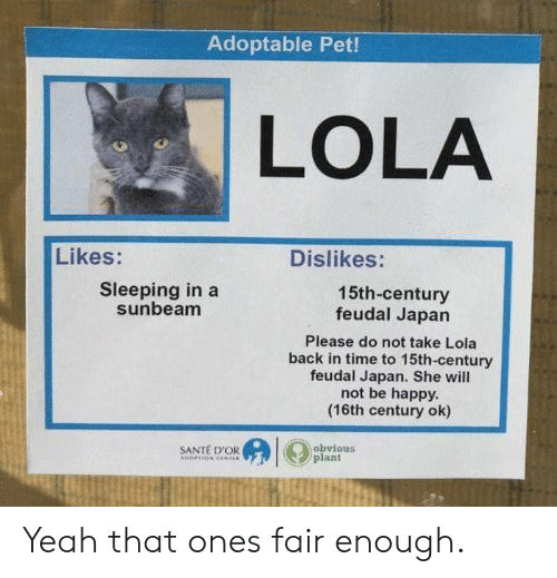 Yeah, Happy, and Japan: Adoptable Pet!  LOLA  Likes:  Dislikes:  Sleeping in a  sunbeam  15th-century  feudal Japan  Please do not take Lola  back in time to 15th-century  feudal Japan. She will  not be happy.  (16th century ok)  SANTÉ D'OR  obvious  plant Yeah that ones fair enough.