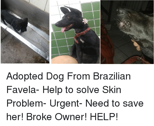 Help, Brazilian, and Her