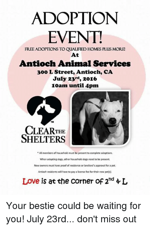 adoption event free adoptions to qualified homes plus more at