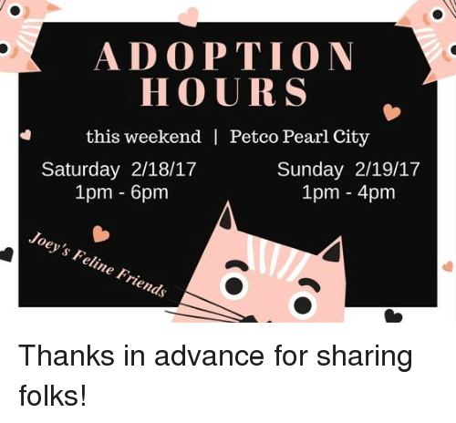 ADOPTION HOURS This Weekend Petco Pearl City Saturday 21817 Sunday
