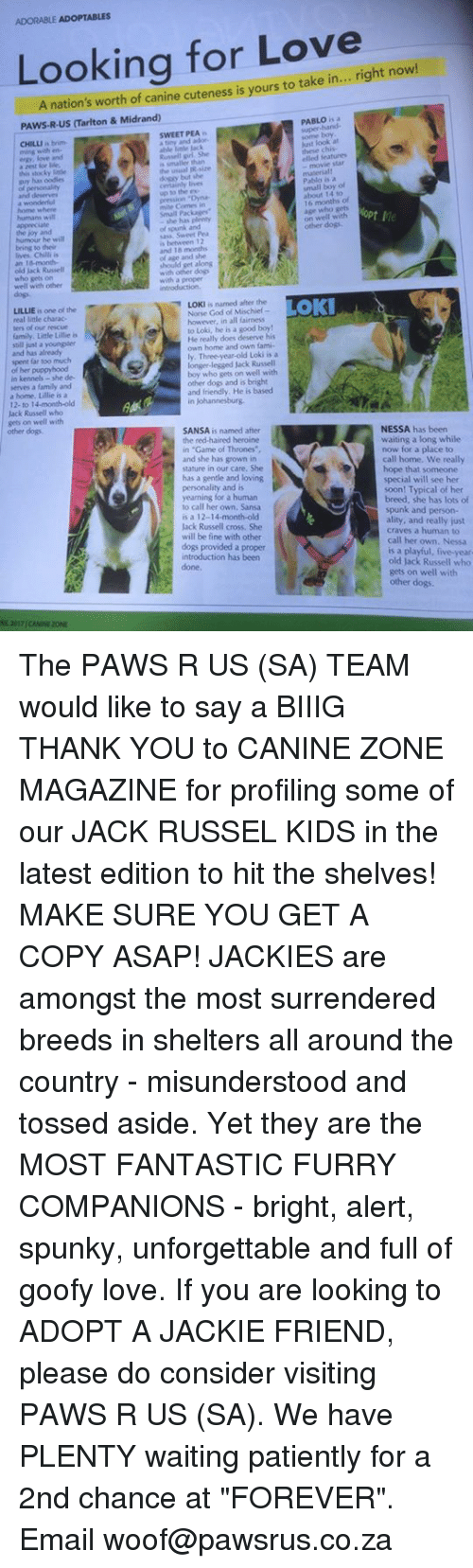 """Dogs, Family, and Game of Thrones: ADORABLE ADOPTABLES  Looking for Love  cuteness is yours to take A nation's right now  PAws R.US Tarlton & Midrand)  SWEET PEA  a Mest for lile.  the usual R wire  but the  Pabla is a  14 to  small Packaere""""  on wel with pt Me  and 18  lives, Chilli is  of age and she  old Jack Russell  well with other  is named after the  Norse God TOKI  LILLIE  is one of the  ters of our rescue  to Loki, he is a good boy!  family. Little Lille is  He really does deserve his  still just a youngster  home and own fami""""  Three-year-old Loki is a  longer legged Jack Russell  boy who gets on well with  in kennels she de-  other dogs and is bright  and friendly, He is based  a home. Lille is a  12 to 1  Jack Russell who  gets on well with  NESSA has been  SANSA is named after  waiting a long while  the red-haired heroine  in """"Game of Thrones  now for a place to  and she has grown in  call home. We really  stature in our care, She  hope that someone  has a gentle and loving  special will see her  soon! Typical of her  breed, she has lots of  to call her own. Sansa  spunk and person-  is a 12-14-month-old  ality, and really just  Jack Russell cross. She  craves a human to  will be fine with other  call her own. Nessa  dogs provided a proper  is a playful, five-year  introduction has been  old Jack Russell who  gets on well with  other dogs. The PAWS R US (SA) TEAM would like to say a BIIIG THANK YOU to CANINE ZONE MAGAZINE for profiling some of our JACK RUSSEL KIDS in the latest edition to hit the shelves! MAKE SURE YOU GET A COPY ASAP!  JACKIES are amongst the most surrendered breeds in shelters all around the country - misunderstood and tossed aside. Yet they are the MOST FANTASTIC FURRY COMPANIONS - bright, alert, spunky, unforgettable and full of goofy love. If you are looking to ADOPT A JACKIE FRIEND, please do consider visiting PAWS R US (SA). We have PLENTY waiting patiently for a 2nd chance at """"FOREVER"""". Email woof@pawsrus.co.za"""