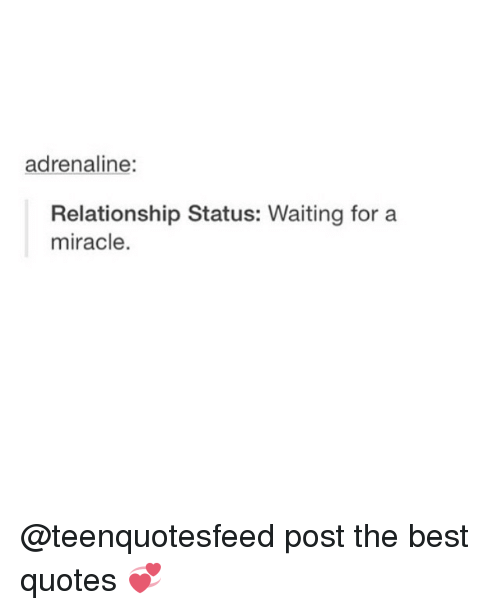 Adrenaline Relationship Status Waiting For A Miracle Post The Best