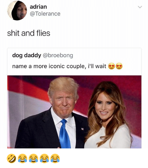 Shit, Girl Memes, and Iconic: adrian  @Tolerance  shit and flies  dog daddy @broebong  name a more iconic couple, i'lI wait  幽幽 🤣😂😂😂😂