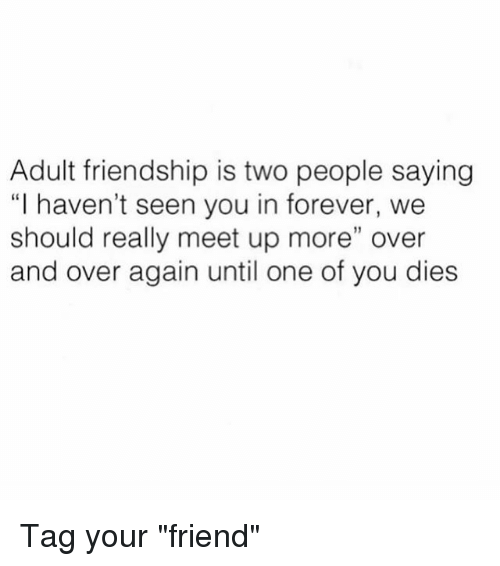 """Memes, Forever, and Friendship: Adult friendship is two people saying  """"I haven't seen you in forever, we  should really meet up more"""" over  and over again until one of you dies Tag your """"friend"""""""
