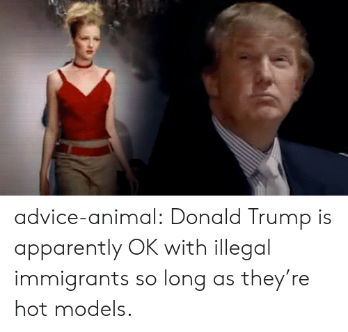 Advice, Apparently, and Donald Trump: advice-animal:  Donald Trump is apparently OK with illegal immigrants so long as they're hot models.
