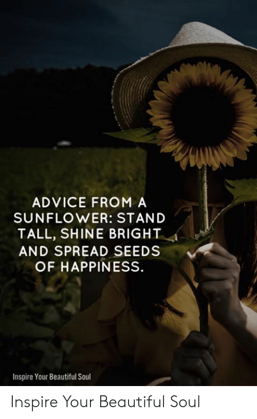 ADVICE FROM a SUNFLOWER STAND TALL SHINE BRIGHT AND SPREAD