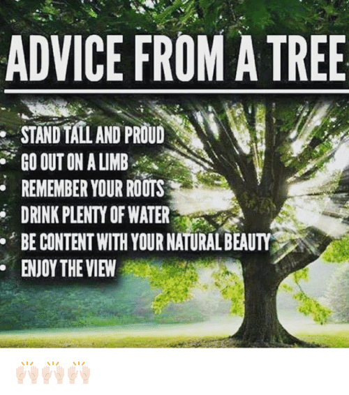 Memes The View And Advice From Atree Standtalland Proud Go Out On