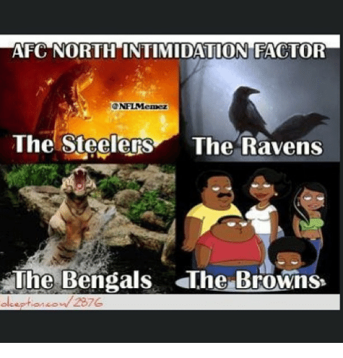 Steelers Ravens Meme >> AFC NORTH INTIMIDATION FACTOR ONFLMemez the Steelers the Ravens the Bengals the Browns 2876 ...
