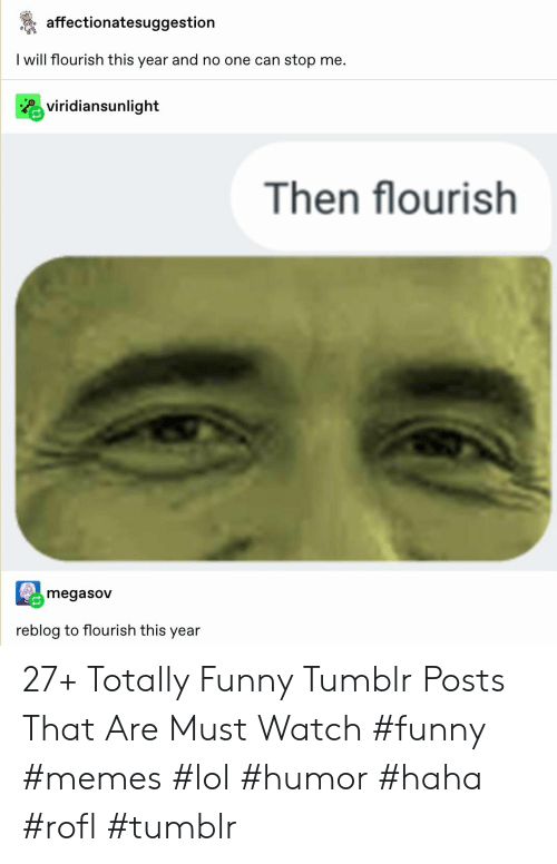 Funny, Lol, and Memes: affectionatesuggestion  I will flourish this year and no one can stop me.  Rviridiansunlight  Then flourish  megasov  reblog to flourish this year 27+ Totally Funny Tumblr Posts That Are Must Watch #funny #memes #lol #humor #haha #rofl #tumblr