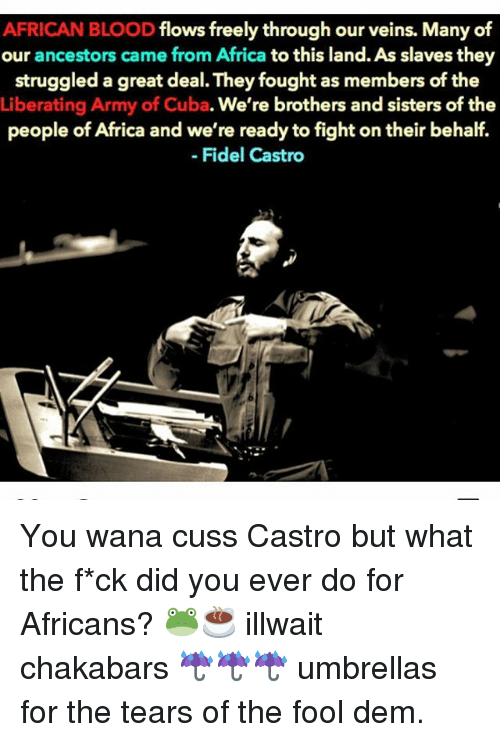 Africa, Memes, and Cuba: AFRICAN BLOOD  flows freely through our veins. Many of  our ancestors came from Africa  to this land. As slaves they  struggled a great deal. Theyfought as members of the  Liberating Army of Cuba. We're brothers and sisters of the  people of Africa and we're ready to fight on their behalf.  Fidel Castro You wana cuss Castro but what the f*ck did you ever do for Africans? 🐸☕️ illwait chakabars ☔️☔️☔️ umbrellas for the tears of the fool dem.