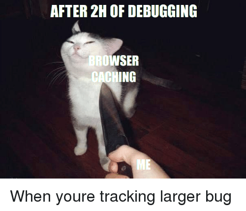 Bug, Browser, and You: AFTER 2H OF DEBUGGING  BROWSER  CACHING When youre tracking larger bug