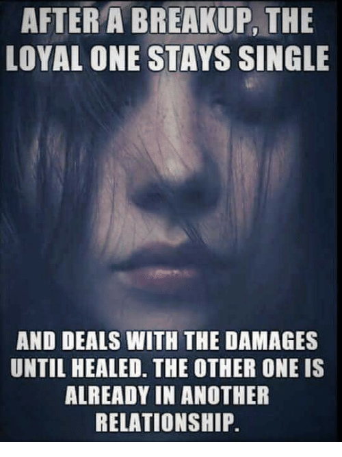 Memes, Single, and 🤖: AFTER A BREAKUP, THE  LOYAL ONE STAYS SINGLE  AND DEALS WITH THE DAMAGES  UNTIL HEALED. THE OTHER ONE IS  ALREADY IN ANOTHER  RELATIONSHIP.