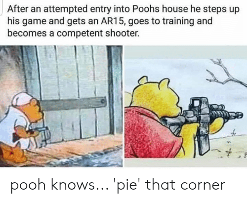 Memes, Game, and House: After an attempted entry into Poohs house he steps up  his game and gets an AR15, goes to training and  becomes a competent shooter. pooh knows... 'pie' that corner